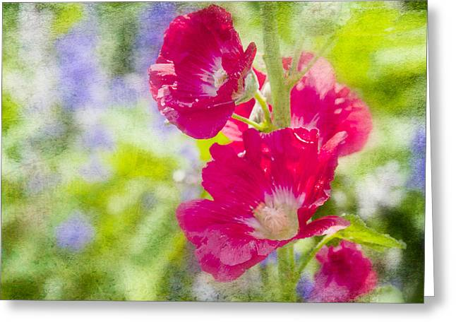 Texture Flower Greeting Cards - Go Paint in the Garden Greeting Card by Toni Hopper