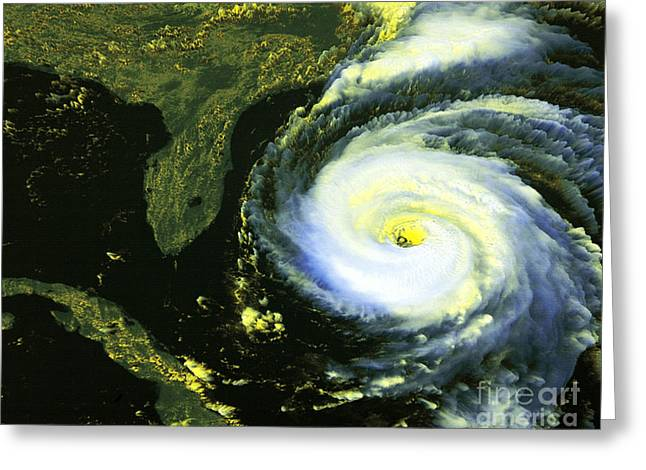 Goes 8 Satellite Image Of Hurricane Fran Greeting Card by Science Source