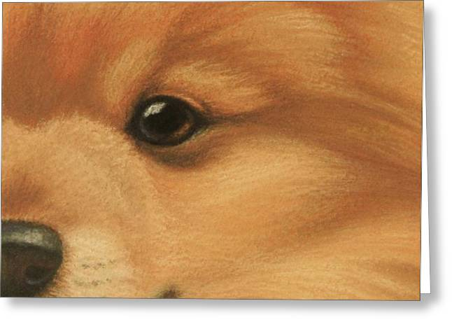 Goggie Pomeranian Greeting Card by Karen Coombes