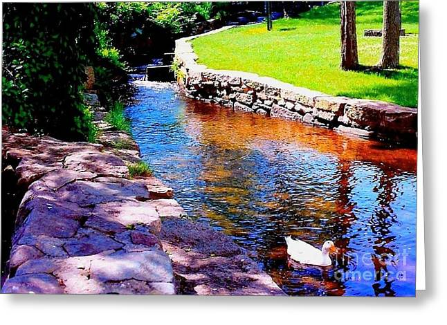 Mill In Woods Photographs Greeting Cards - Going It Alone Greeting Card by Annie Zeno