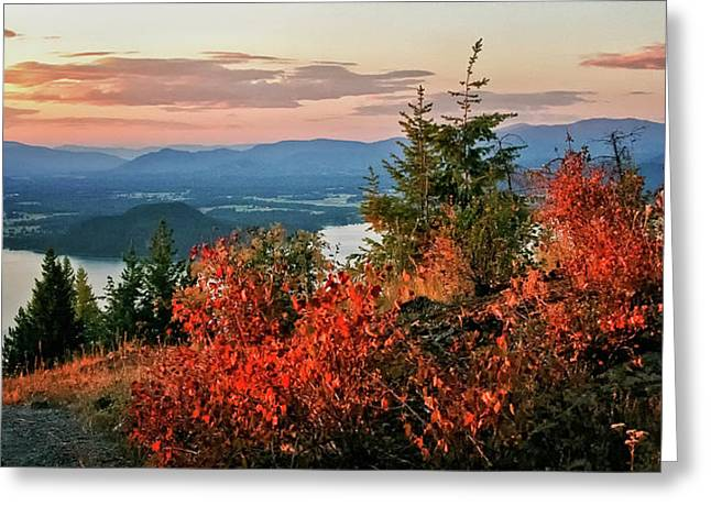 Lake Pend Oreille Greeting Cards - Gold Hill Sunset Greeting Card by Albert Seger
