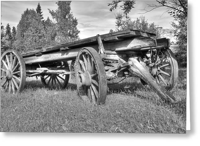 Gold Rush Wagon Greeting Card by Thomas Payer