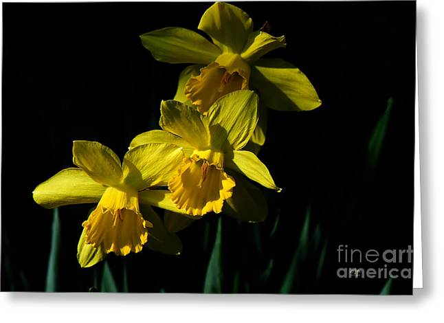 Golden Bell Greeting Cards - Golden Bells Greeting Card by Lois Bryan