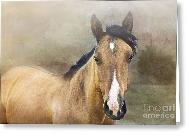 Quarter Horse Digital Art Greeting Cards - Golden Greeting Card by Betty LaRue