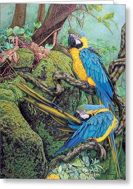 Amazon Greeting Card Greeting Cards - Golden Blue Greeting Card by Carole Niclasse