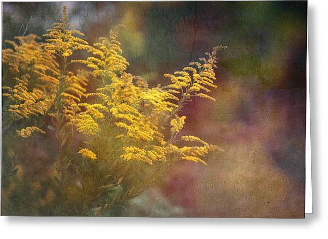 Bryant Greeting Cards - Golden Greeting Card by Brenda Bryant