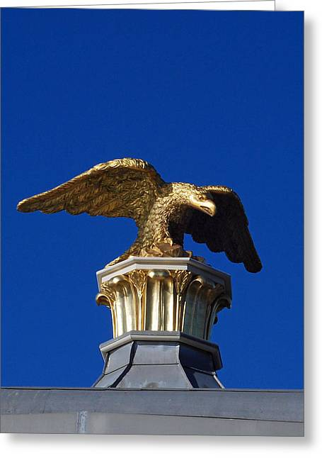 Golden Eagle Greeting Card by Lisa Phillips