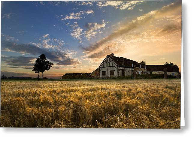 Swiss Photographs Greeting Cards - Golden Evening Greeting Card by Debra and Dave Vanderlaan