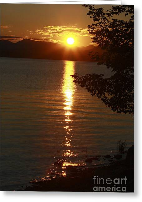 Charlotte Vermont Greeting Cards - Golden Evening Sun Rays Greeting Card by Deborah Benoit