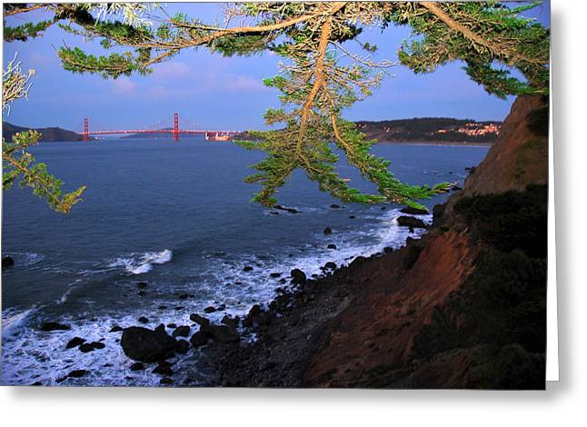 Flash Greeting Cards - Golden Gate Bridge Seen From Legion Greeting Card by Raymond Gehman