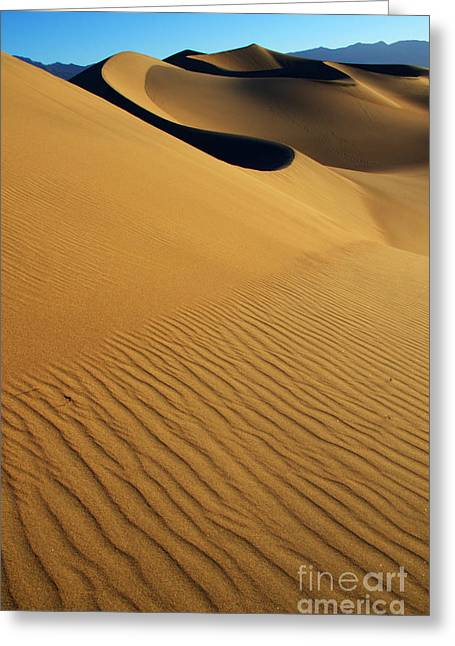 Sand Pattern Greeting Cards - Golden Hour Greeting Card by Bob Christopher