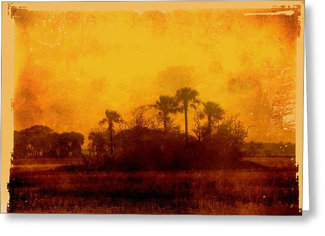 Marsh Scene Greeting Cards - Golden Land Greeting Card by Susanne Van Hulst