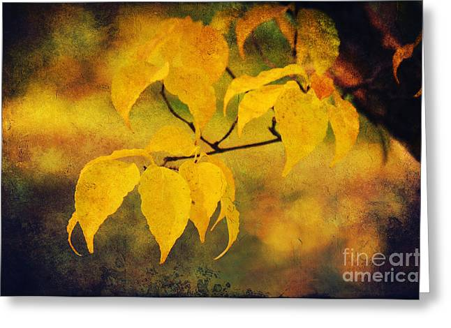 Bokeh Mixed Media Greeting Cards - Golden leaf Greeting Card by Angela Doelling AD DESIGN Photo and PhotoArt
