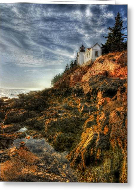 Maine Landscape Greeting Cards - Golden Light at Bass Harbor Greeting Card by Lori Deiter