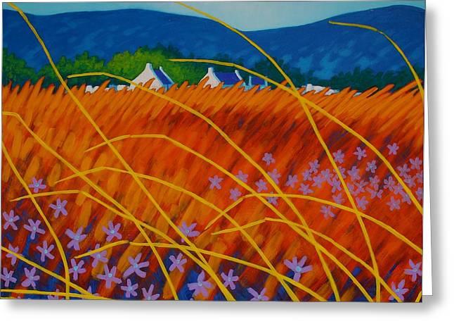 Golden Meadow Greeting Card by John  Nolan