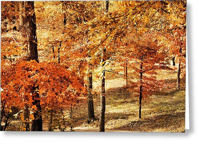 Golden Path Greeting Card by Jai Johnson