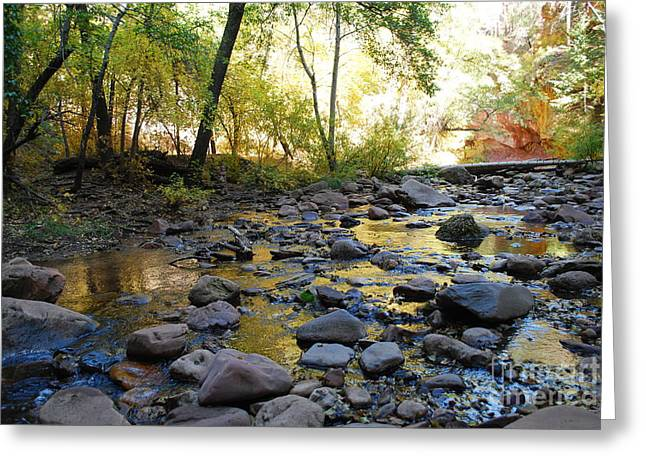 West Fork Greeting Cards - Golden Reflection in the Canyon of  Light Greeting Card by Heather Kirk
