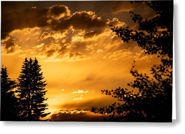Clouds Posters Greeting Cards - Golden Sky 2 Greeting Card by Kevin Bone