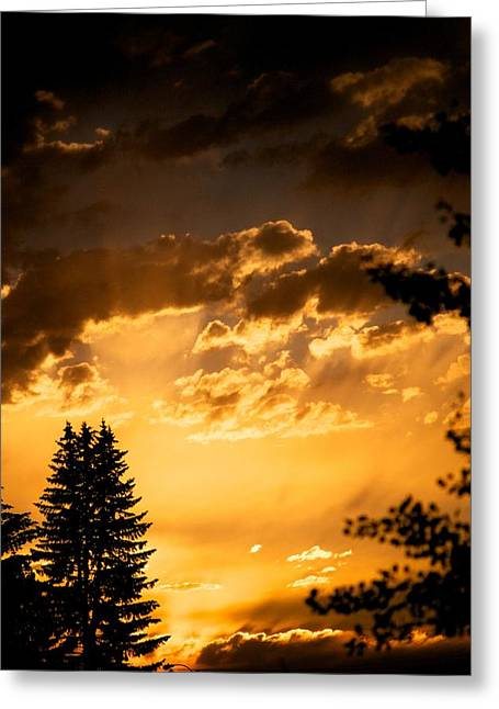 Sunset Posters Greeting Cards - Golden Sky Greeting Card by Kevin Bone