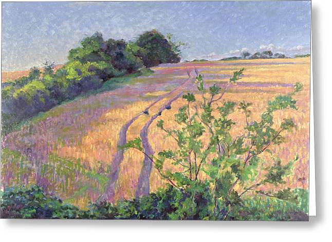 Cornfield Paintings Greeting Cards - Golden Summer Greeting Card by Robert Tyndall