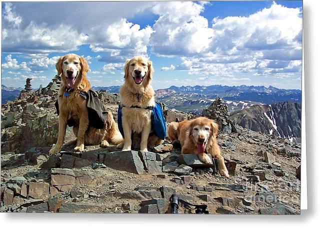 Top Seller Greeting Cards - Golden Summit Greeting Card by Kara Kincade