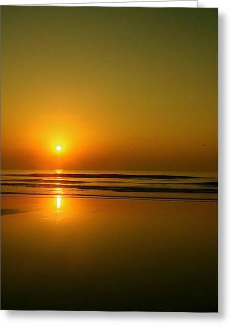 Golden Sunrise Greeting Card by Darren Cole Butcher