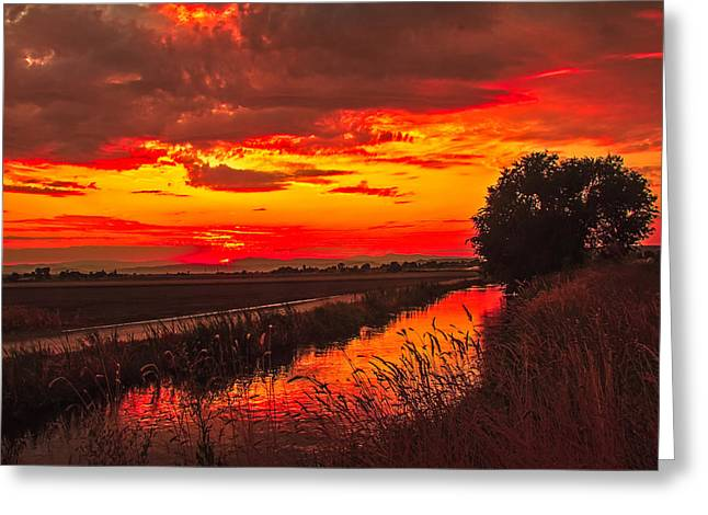 Haybale Greeting Cards - Golden Sunrise Greeting Card by Robert Bales