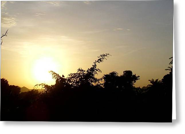 Most Viewed Photographs Greeting Cards - Golden Sunset Greeting Card by Ariba Ephraim