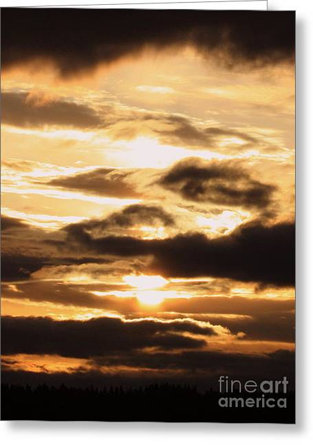 Spokane Greeting Cards - Golden Sunset Greeting Card by Carol Groenen