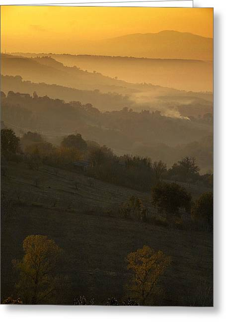 Luminescen Greeting Cards - Golden sunset  Greeting Card by Proyecto Imagen - Studio Creativo Impar