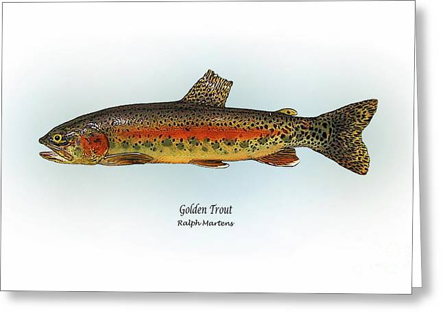 Trout Fishing Drawings Greeting Cards - Golden Trout Greeting Card by Ralph Martens