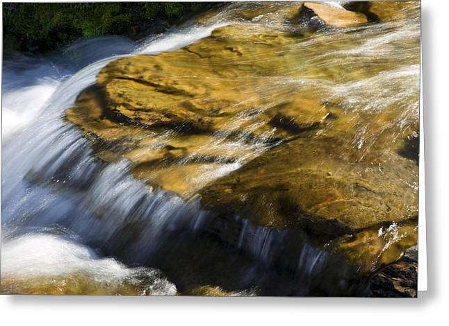 Clean Water Greeting Cards - Golden Waterfall Glacier National Park Greeting Card by Rich Franco
