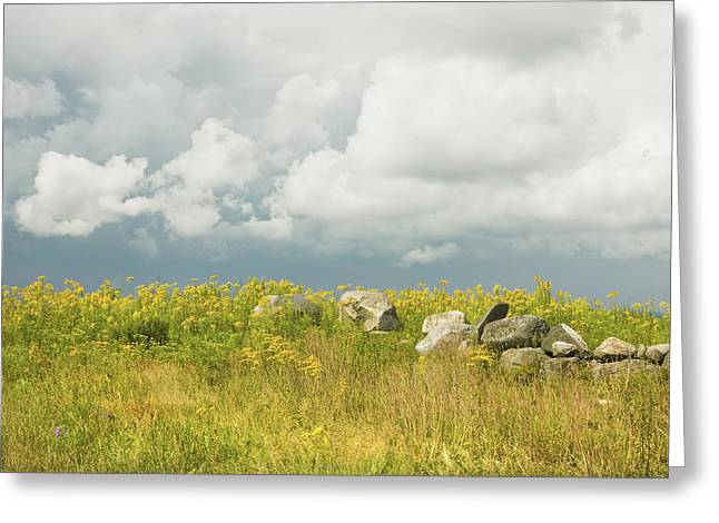 Field. Cloud Greeting Cards - Goldenrod And Stone Wall In Farm Field Sky Maine Greeting Card by Keith Webber Jr