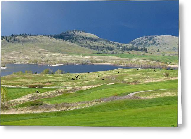 Golfing Photographs Greeting Cards - Golfing And Grazing Greeting Card by Will Borden