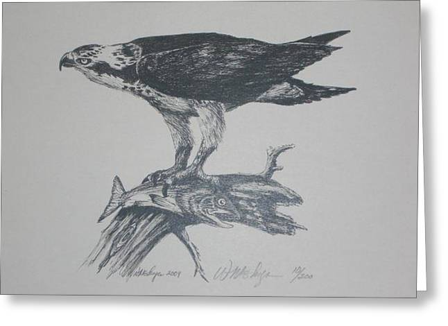 Osprey Drawings Greeting Cards - Gone Fishin Greeting Card by W Wayne Mosbarger