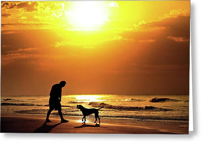 Dog Play Beach Greeting Cards - Good Boy Greeting Card by Steven Llorca