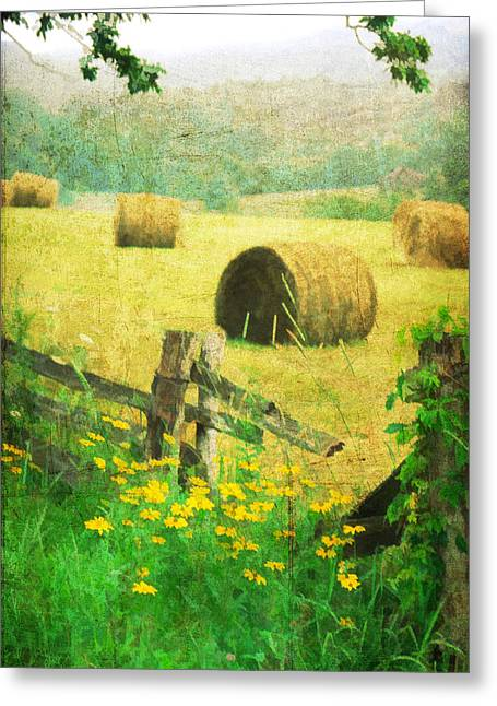 Split Rail Fence Greeting Cards - Good Day For Dreams Greeting Card by Darren Fisher