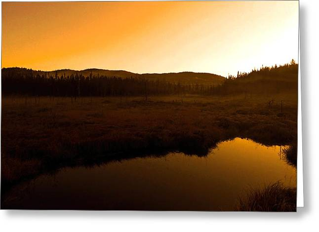 Spiegelung Greeting Cards - Good Morning Laurentians ...   Greeting Card by Juergen Weiss