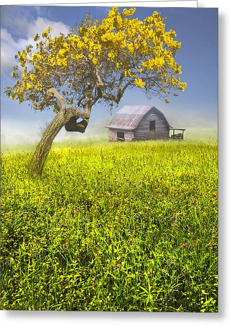 Tennessee Hay Bales Greeting Cards - Good Morning Spring Greeting Card by Debra and Dave Vanderlaan