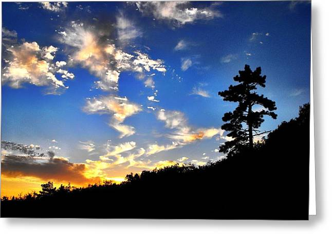 Colorful Photos Greeting Cards - Goodnight Greeting Card by Skye Zambrana