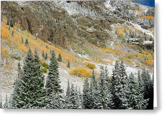 Gore Range Cold Greeting Card by Adam Pender