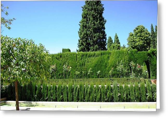 Ocean Panorama Greeting Cards - Gorgeous Garden in Alhambra Granada Spain Greeting Card by John A Shiron
