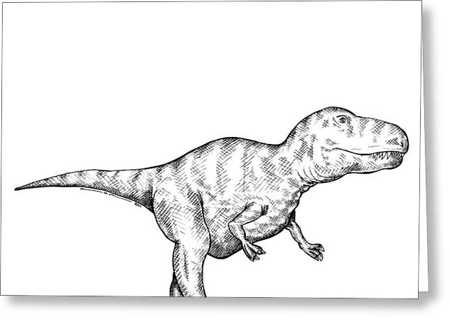 Nature Study Drawings Greeting Cards - Gorgosaurus - Dinosaur Greeting Card by Karl Addison