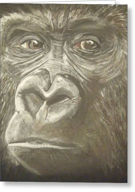 Gorilla Drawings Greeting Cards - Gorilla Greeting Card by Catherine Eager