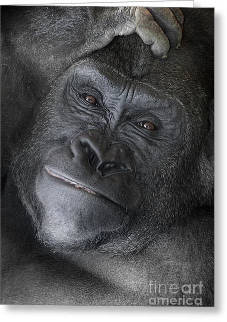 Expressive Pyrography Greeting Cards - Gorilla  Greeting Card by Jeff Grabert