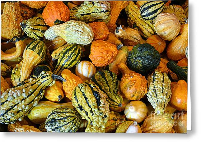 Farm Stand Greeting Cards - Gourdgeous Greeting Card by Kevin Fortier