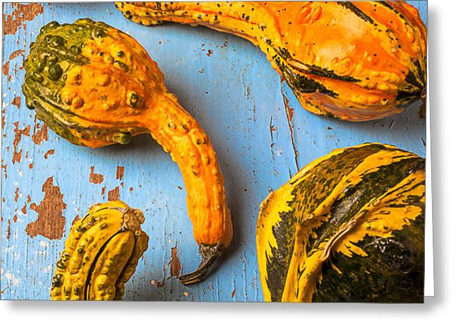 Gourds on wooden blue board Greeting Card by Garry Gay