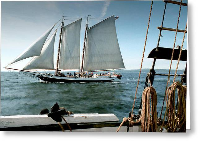 Schooner Greeting Cards - Grace Bailey Greeting Card by Fred LeBlanc