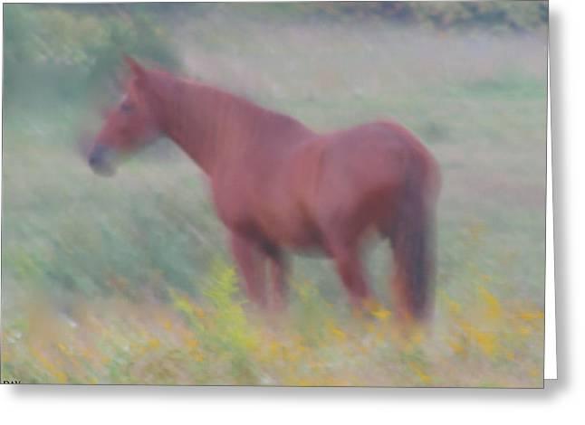 Pastureland Paintings Greeting Cards - Grace In The Meadow Greeting Card by Debra     Vatalaro