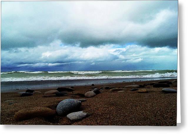 Beach Photography Greeting Cards - Gracefully Greeting Card by Cyryn Fyrcyd
